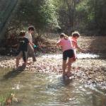 actividades-en-la-naturaleza-para-niños